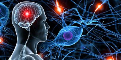 Neuropsychologie.png